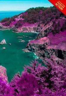 pink-nature-photoshop-acrtion