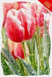 spring-aquarelle-photoshop-action