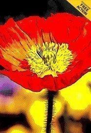high-red-contrast-cartoon-effect