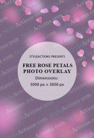 overlay-rose-petals