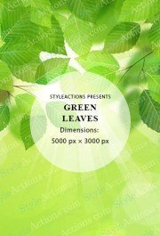green-leaves-overlay