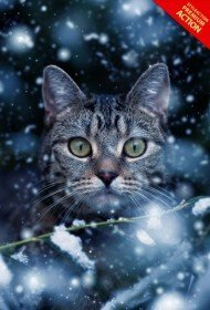 snow-effect-photoshop-action